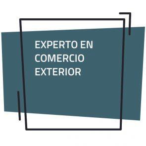 Finaliza la Edición 2020 del Experto en Comercio Exterior